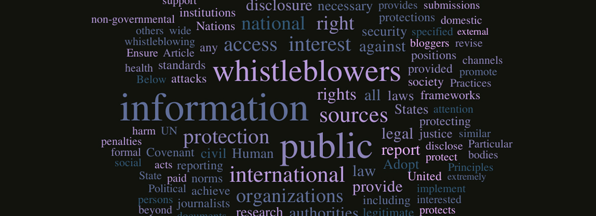 Special Rapporteur\'s Report on the Protection of Sources and Whistleblowers